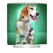 Super Pets Series 1 - Super Buckley Shower Curtain