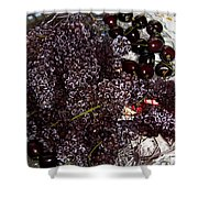 Super Small Grapes Shower Curtain