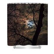 Supermoon W Tree 12-13-16 Shower Curtain