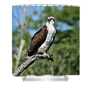 Supervisor Of Security Shower Curtain