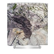 Surface Coal Mining In Poland. Destroyed Land. View From Above.  Shower Curtain