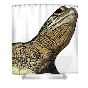 Surface Shower Curtain