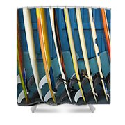Surfboards Shower Curtain by Dana Edmunds - Printscapes