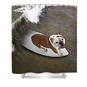 Surfer Dog Shower Curtain
