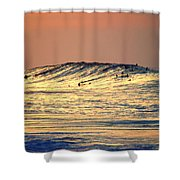 Surfers Gold Shower Curtain