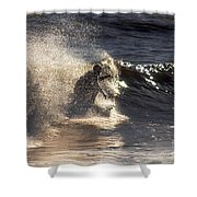 Surfs Up In Socal Shower Curtain
