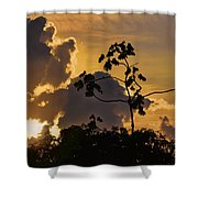 Suriname Sunset Shower Curtain