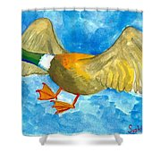 Surprised Flying Duck Detail Of Duck Meets Fairy Ballet Class Shower Curtain