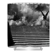 Surreal Gothic Infrared Black Caped Figure With Gargoyle On Paris Steps Shower Curtain