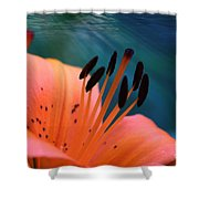 Surreal Orange Lily Shower Curtain