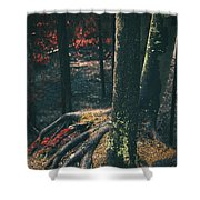 Surreal Red Leaves In A Dark Forest Finland Shower Curtain