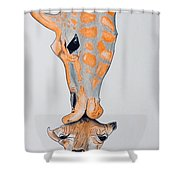 Surrealist Mother And Baby Giraffe  Shower Curtain
