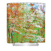 Lightness Of Surrender Shower Curtain
