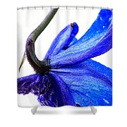 Surrender Shower Curtain