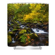Surrounded By Fall Color Shower Curtain