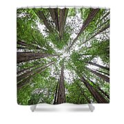 Surrounded By Giants Shower Curtain