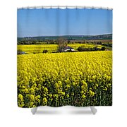 Surrounded By Rapeseed Flowers Shower Curtain