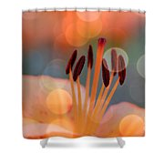 Surrounded By Soothing Sunshine Shower Curtain