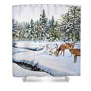 Surviving The Winters Shower Curtain
