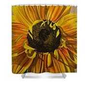Susanna's Sunflower Shower Curtain