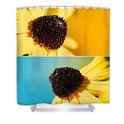 Susans Shower Curtain