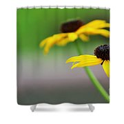 Susans Shower Curtain
