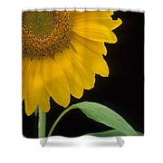Sussex County Gem Shower Curtain