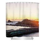 Sutro Seagulls Shower Curtain
