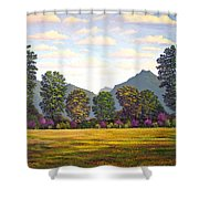 Sutter Buttes In Springtime Shower Curtain
