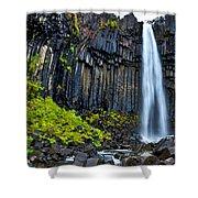 Svartifoss Waterfall - Iceland Shower Curtain