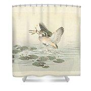 svogel, Kono Bairei, Aoki Kosaburo, Aoki Kosaburo, 1893 Shower Curtain