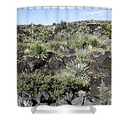 Sw01 Southwest Shower Curtain