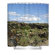 Sw03 Southwest Shower Curtain