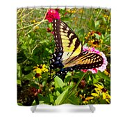Swallow Tail Butterfly Enjoying The Sunshine Shower Curtain