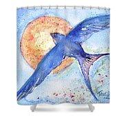 Swallows Return  Shower Curtain