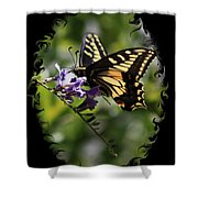 Swallowtail Butterfly 1 With Swirly Frame Shower Curtain