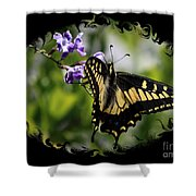 Swallowtail Butterfly 2 With Swirly Framing Shower Curtain