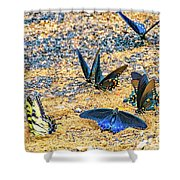 Swallowtail Butterfly Convention Shower Curtain