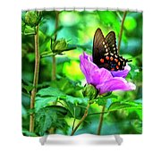 Swallowtail In Flower Shower Curtain
