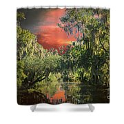 Swamp 1 Shower Curtain