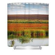 Swamp And Field Landscape Autumn Season Shower Curtain