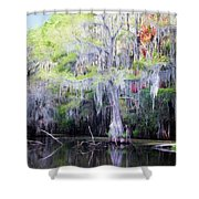 Swamp Colors Shower Curtain