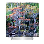 Swamp Dance Shower Curtain