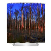 Swamp In Cypress Gardens Shower Curtain
