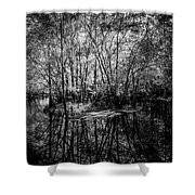 Swamp Island Shower Curtain