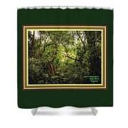 Swamp L A With Decorative Ornate Printed Frame. Shower Curtain