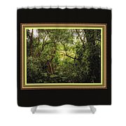 Swamp L B With Decorative Ornate Printed Frame. Shower Curtain