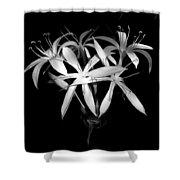 Swamp Lilies Shower Curtain