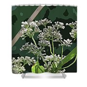 Swamp Milkweed Abstract Shower Curtain