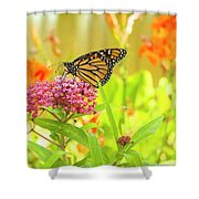 Swamp Milkweed And Monarch Shower Curtain